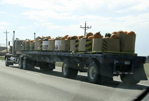 tn_pumpkin_truck